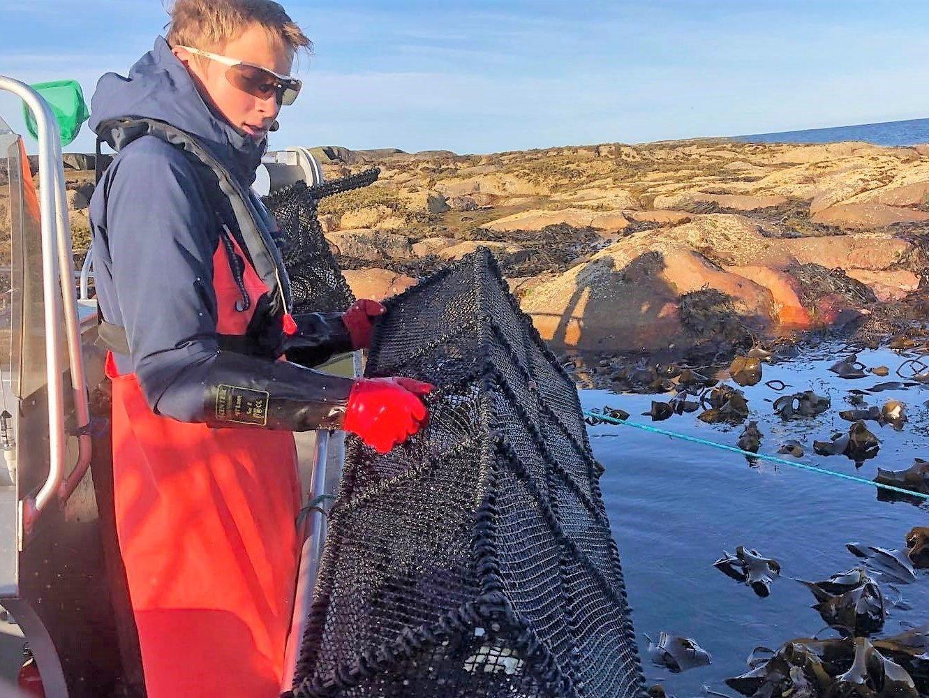 Fiskeopplevelser og øyhopping i skjærgården på Trøndelagskysten, Øyrekka.