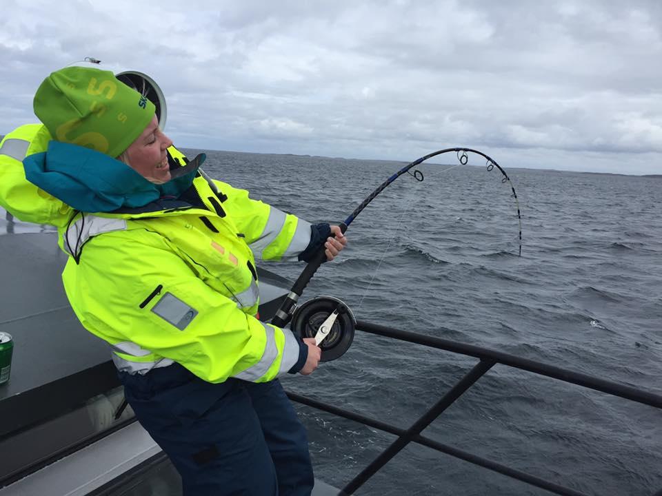 Øyhopping og havfiske i Frøyas skjærgård, Øyrekka på Trøndelagskysten