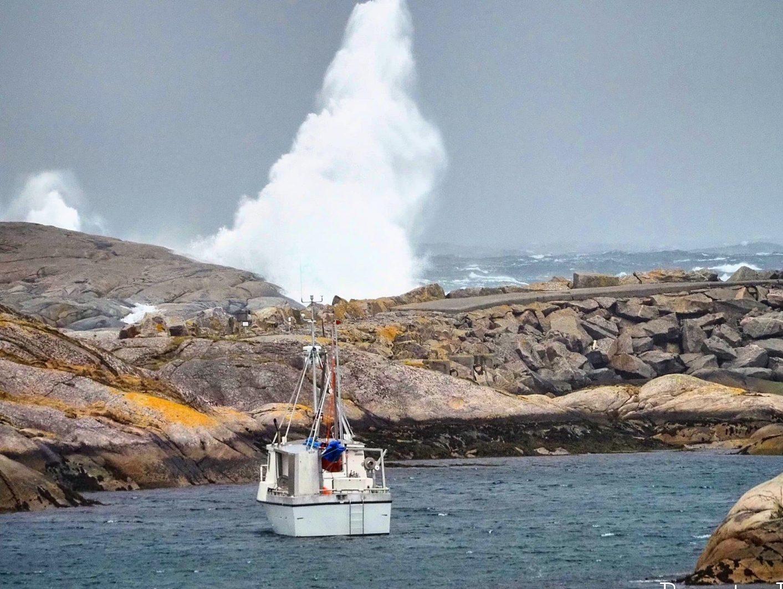 Stormvær og helårs kystopplevelser i Øyrekka på Frøya
