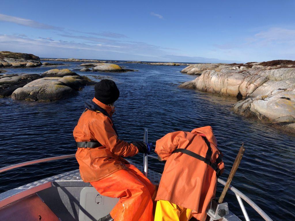 Helårs kystopplevelser på Trøndelagskysten. Firma, grupperturer, workation og bortekontor i Øyrekka på Frøya